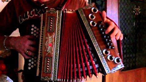 Harmonika Qidi 10 steirische harmonika der paul und sei gaul