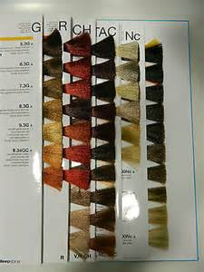 rusk hair color chart rusk shine color chart book covers