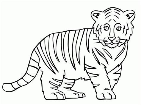Tiger Outline Images by Outline Of A Tiger Outline Of A Tiger Coloring Home Coloring Pages Superb Coloring Inspiration