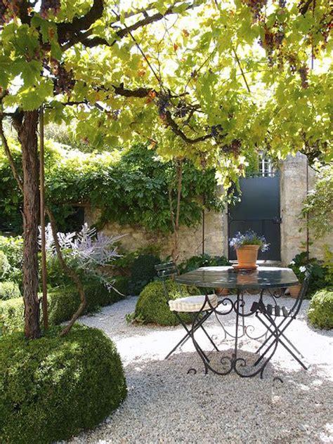 backyard grape trellis design romantic grape arbor patio garden