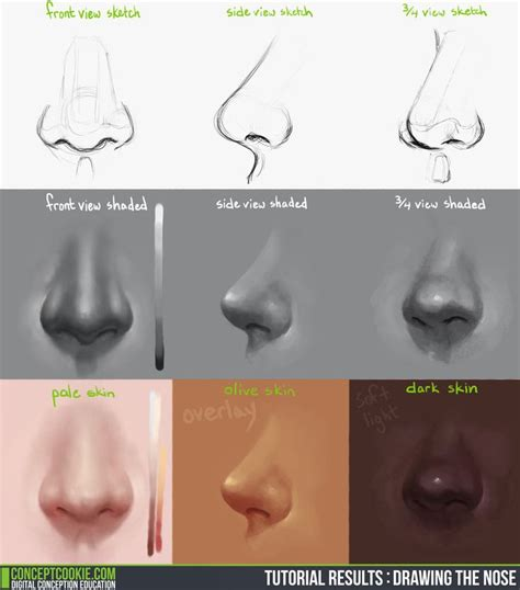 tutorial of c drawing the nose video tutorial by conceptcookie