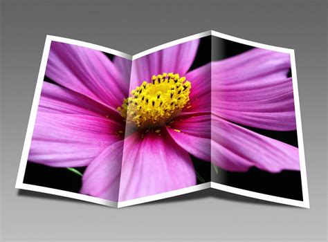 Tri Fold Card Stock Paper - brochures printable brochure papers tri fold bi fold card