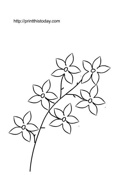 pretty flower coloring pages az coloring pages