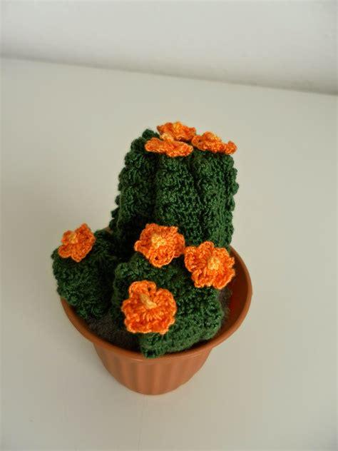 pianta fiori arancioni il di sam spiegazione della piantina grassa all