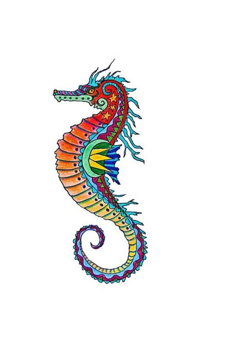 colorful seahorse seahorse drawing colorful