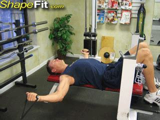 flat bench cable flye flat bench cable flyes chest exercise guide with photos