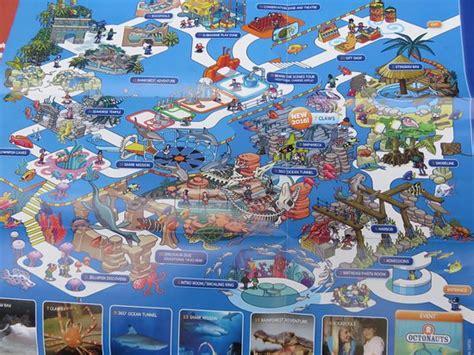 grapevine map foto de sea grapevine grapevine guitar fish