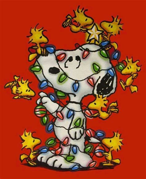 lights on snoopy christmas pinterest