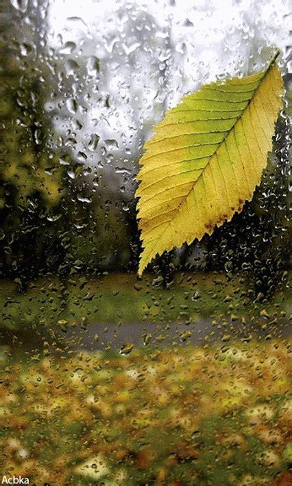 imagenes bellas lloviendo 22 im 225 genes animadas lloviendo 1000 gifs ruby