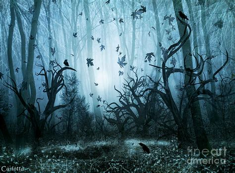 Home Decorating Ideas For Halloween by Haunted Forest Digital Art By Carlotta Ceawlin