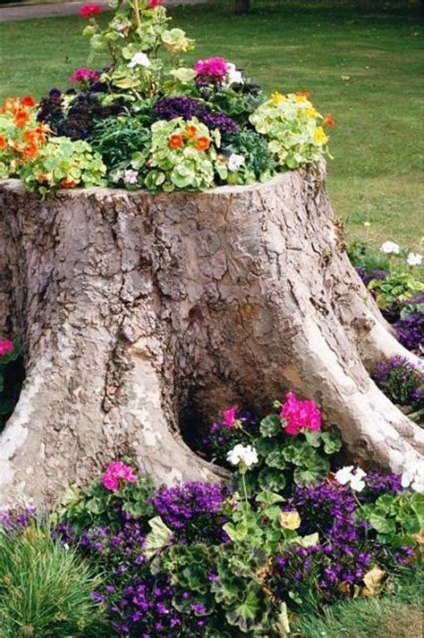 Decorating A Tree Stump by Recycling Tree Stumps For Yard Decorations To Remove Tree