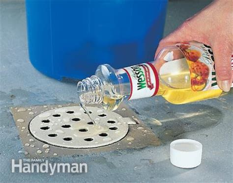 eliminate drain odor the family handyman