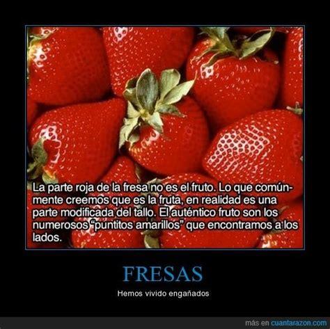 imagenes de palabras fresas http www cuantarazon com 788914 fresas 191 lo sab 237 as