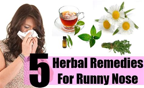 home remedies for stuffy runny nose