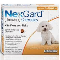 nexgard for dogs reviews nexgard for dogs buy nexgard chewables flea tick for dogs in us