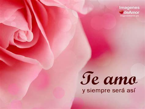 18 im 225 genes de amor que digan te amo para dedicar dibujos rosas te amo imagenes de amor imagenes lindas 10