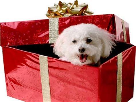 imagenes navideñas regalos cajas para regalos de navidad manualidades navide 241 as