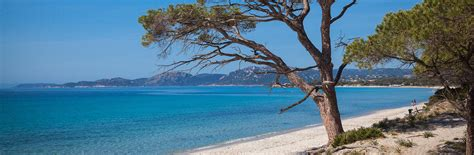 lonely planet porto porto vecchio guide de voyage porto vecchio lonely planet