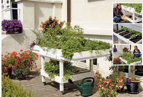 orto in cassetta orto in cassetta come costruire il banchetto fai da te