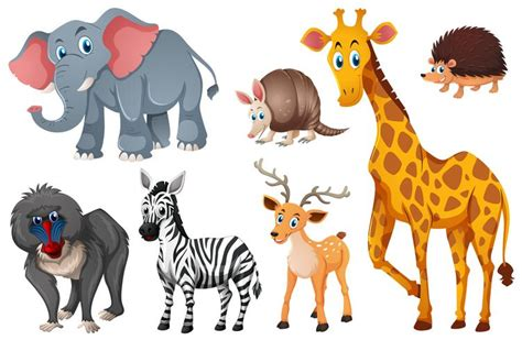types  wild animals   vectors clipart graphics vector art