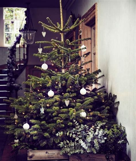 best place to buy a christmas tree near me best places to buy a tree near birmingham birmingham live