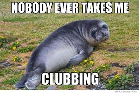 For Seal Meme - funny seal meme memes
