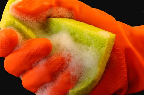 Kitchen Sponge Bacteria by Did You That Your Kitchen Sponge Is A Hotbed For