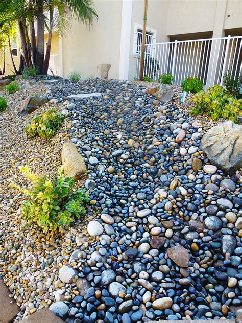 water wars xeriscaping in southern california and