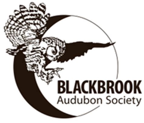 blackbrook audubon society blackbrook audubon home