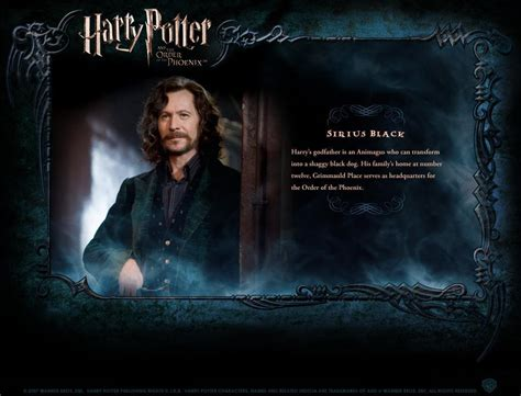 biography of harry potter hp bio harry potter movies photo 1759595 fanpop