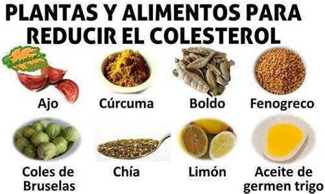 remedios naturales  plantas  el colesterol  plantas medicinales  alimentos sobre la