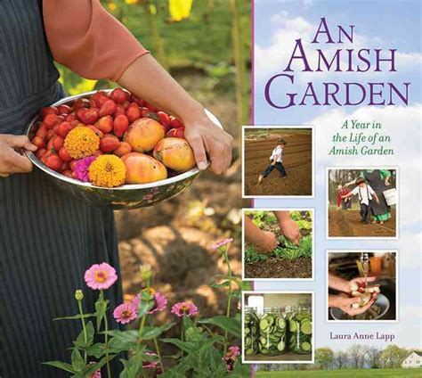 the amish and garden amish outcasts books an amish garden a year in the of an amish garden