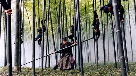 pugnali volanti la foresta dei pugnali volanti scheda netflix