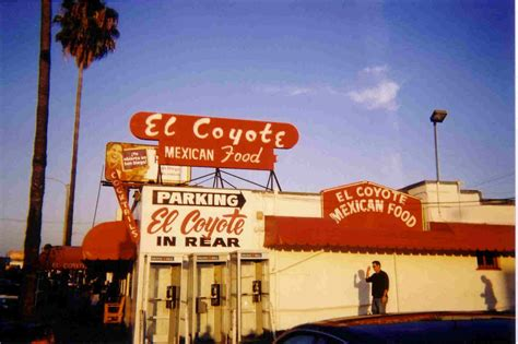 el coyote el coyote statement on prop 8 goes down in flames the