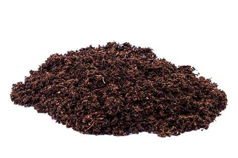 100 using peat moss in vegetable garden peat moss