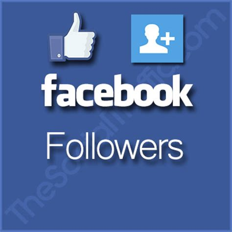 The Social Traffic Targeted Social Media Marketing Services