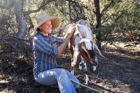 darkest hour quail springs stewardship and permaculture at quail springs the