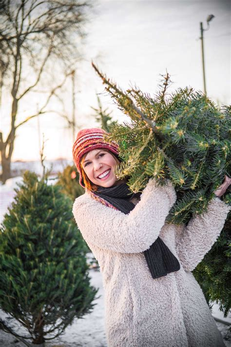 cut your own tree in carrol county md 2015 tree farm list carrollmagazine