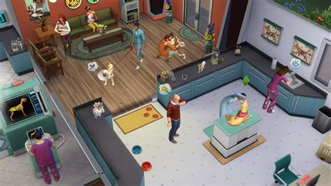 cats and dogs sims 4 the sims 4 cats and dogs expansion pack coming november eurogamer net