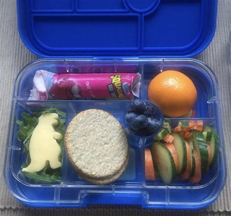 To Market Recap Lunchbox by Yumbox Lunch Box Review Lunchbox World