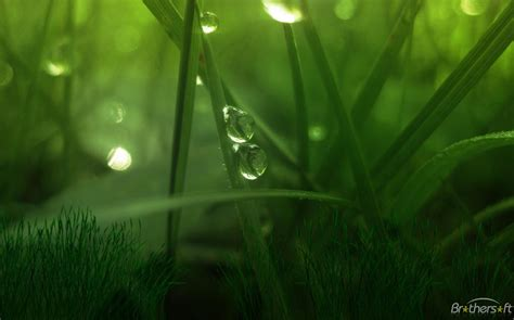 wallpaper green world download free green world animated wallpaper green world