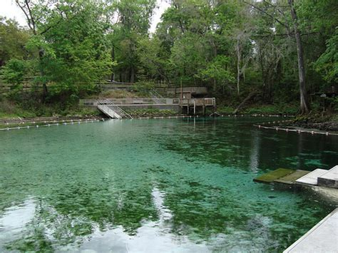 fanning springs state park fanning springs state park levy county fl explore
