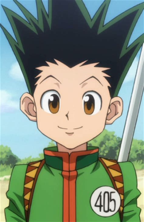 hunter x hunter wikia hunter gon freeks hunter x hunter wiki fandom powered by wikia