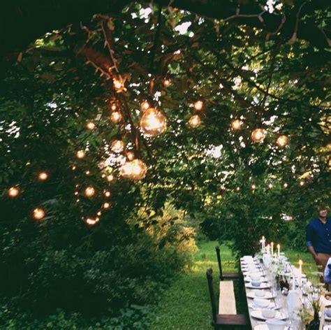 globe light tree 25 best lights in trees ideas on backyards