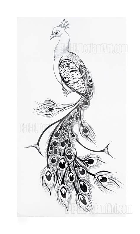 tribal peacock tattoo designs tattoos que ideas by madeline wimer