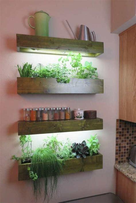 herb plants  grow lightsi  indoor plants
