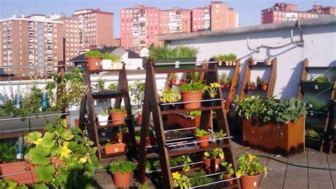 imagenes de huertas urbanas huertas urbanas cosechar en medio de la ciudad es posible