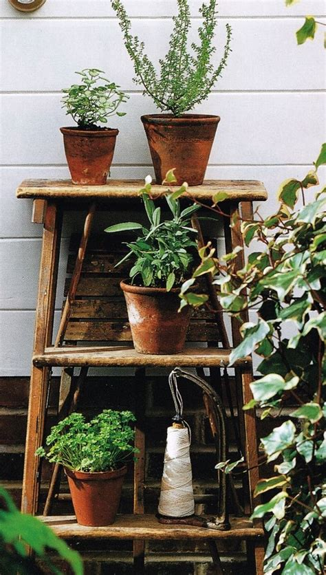 outdoor plant shelving outdoor oasis
