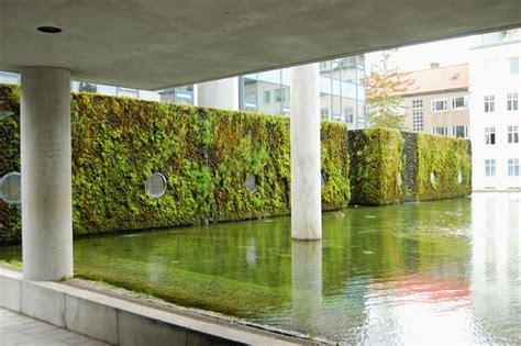 toronto gardens inspiration from iceland moss living