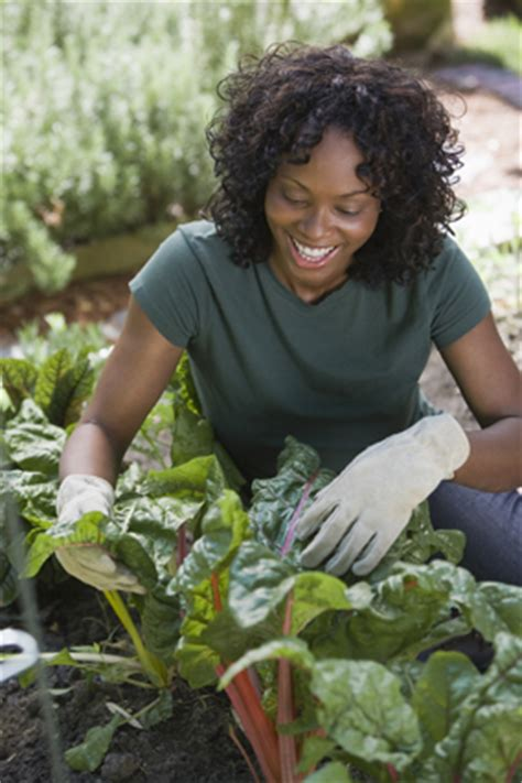 Calories Burned While Gardening by Burn Calories While Helping Others
